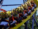 Rollercoaster photo by SXC.hu user cmx82